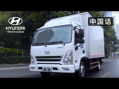 Hyundai  Shengtu
