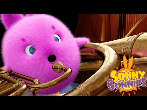 Cartoons for Children | THE SUNNY BUNNIES MUSICAL BUNNIES | Funny Cartoons For Children