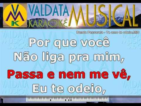 Banda Passarela   Te amo te odeio   BAILÃO   Karaoke