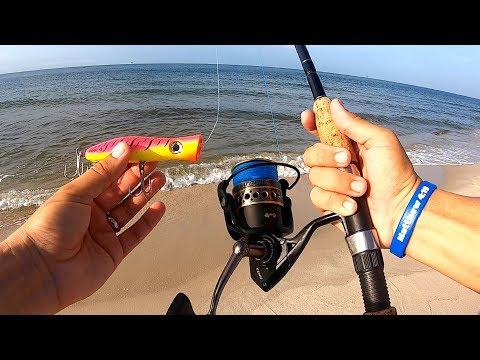 Topwater POPPER Surf Fishing!