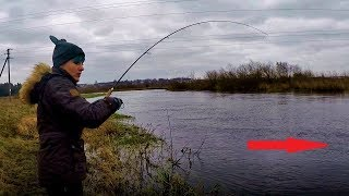 Рыбалка в Беларуси - Неман, ловля спиннингом и укротительница щуки (декабрь 2017) #33