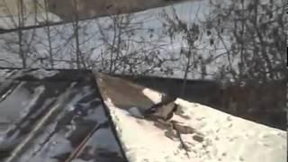 WRONA NA SNOWBOARDZIE