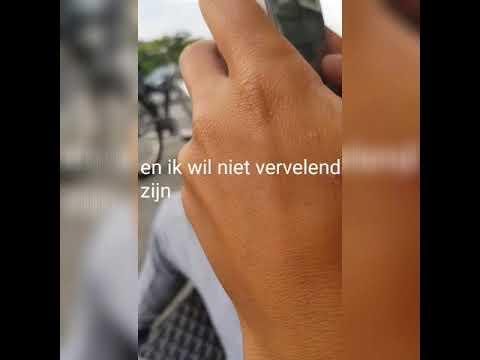 Lyrics Prank Uit Halen