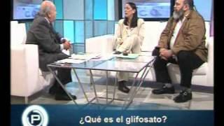 ¿Qué es glifosato?  Part II