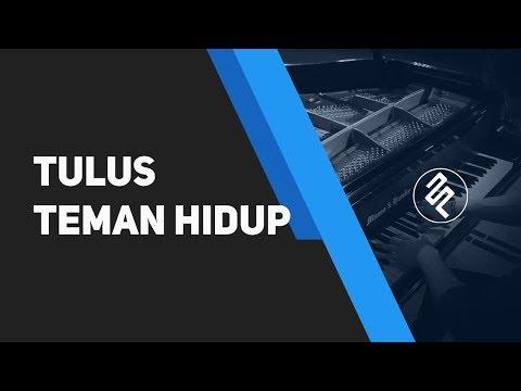 Teman Hidup - Tulus (Piano Cover by fxpiano CHORD dan LIRIK)