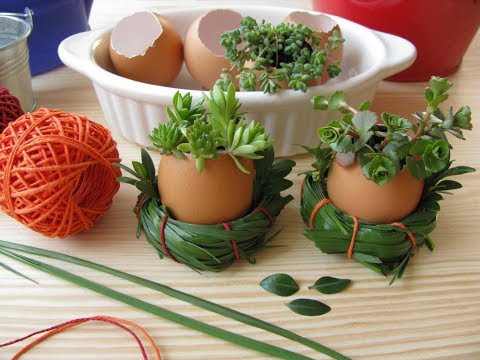 How to Make Eggshell Plant Pots for Easter Decorations - A Quick and Simple Tutorial