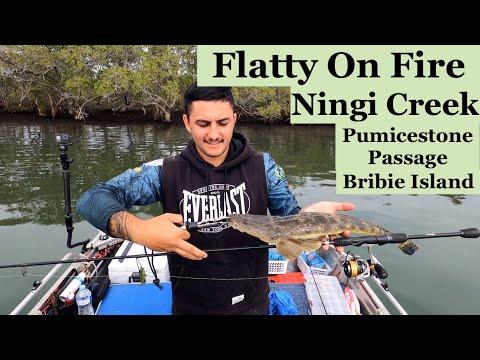 FLATHEAD FISHING Fires Up In Ningi Creek