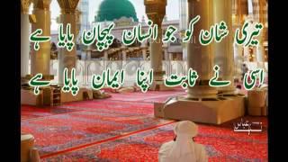 Muhammad Hamare Bari Shan Wale - Naat - Islamic Poetry - Tanha Abbas - Ma Abdullah - New Naat