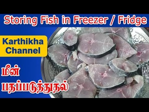 How To Store Fish In Freezer - Fish Storing In Fridge - How To Store Fish In Fridge In Tamil