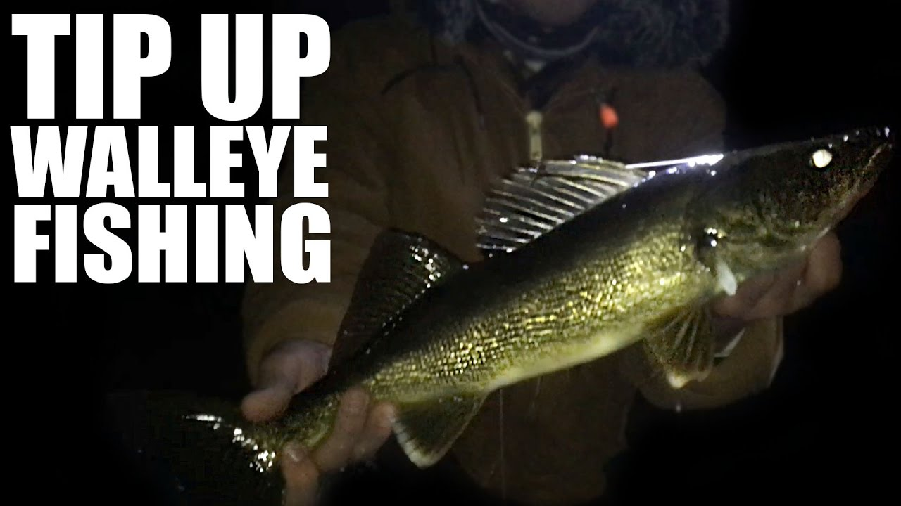 Walleye fishing with tip ups in northern wi youtube for Tip up fishing