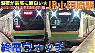 終電ウォッチ☆JR小田原駅 深夜の東海道線が面白すぎる! 東海道新幹線 こだま浜松行き・終電案内自動放送など