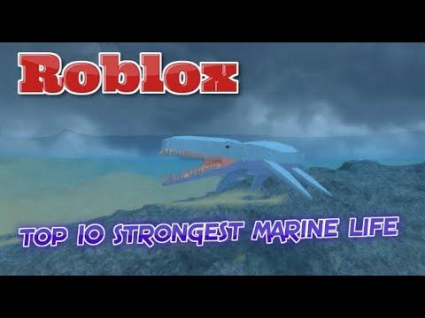 Dinosaur Simulator - TOP 10 Strongest Marine Life!