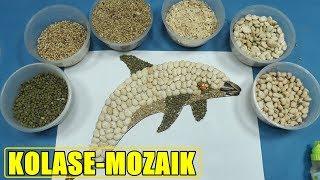Kolase Ikan Lumba Lumba Dari Biji  Kacang Coloring for Children Preschol