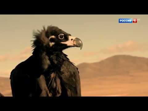 Монгольское нашествие (1