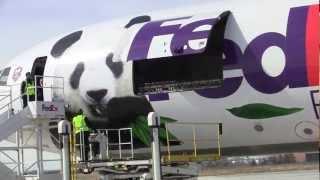 Giant Pandas arrive at Toronto Pearson