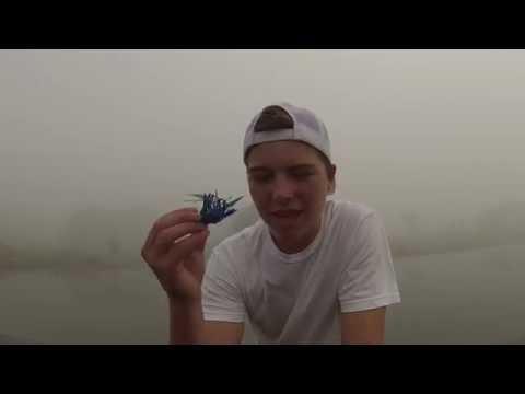 Small Foggy Pond Score! (Ft. KR Shoreline)