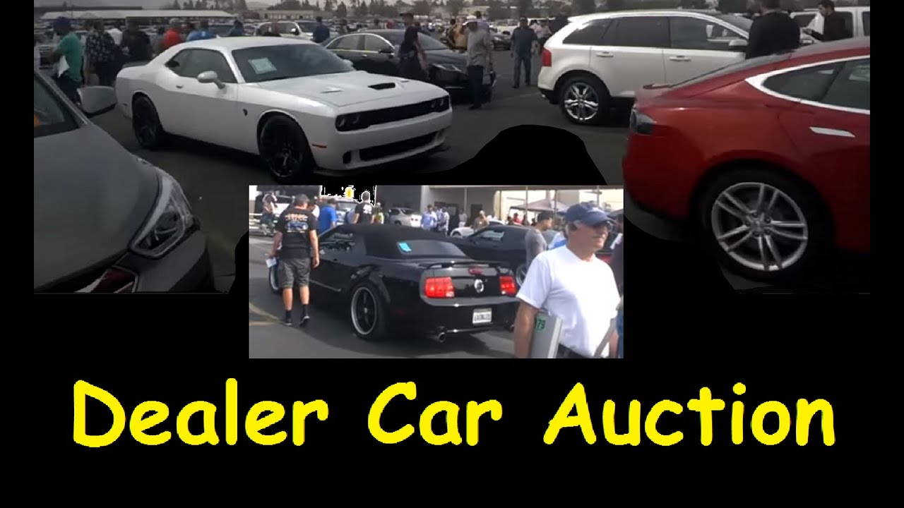 Live Bidding Auction Cars Dealer Only Auto Auctions Video 2 Youtube