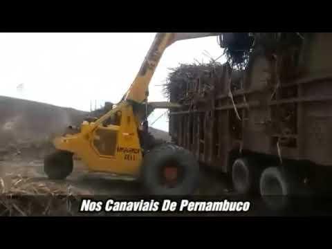 Safra 2019/2020 - Carregamento de Cana da Usina JB de Vitória de Santo Antão - PE.