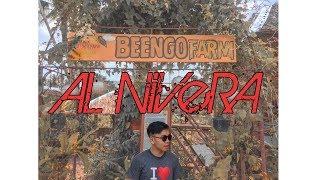 BEENGO FARM, TUNGA LEYTE- Daniel Marsh Inspired (Cinematic shots)