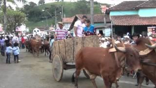 Desfile de carros de boi de Ipuiuna 2014