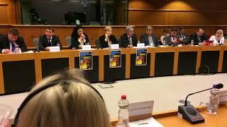 видео Депутати Європарламенту виступили за надання Україні безвізу