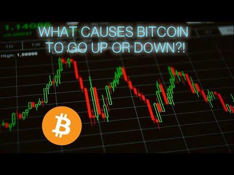 7 Lần Biến động Giá Lớn Nhất Của Bitcoin Trong Lịch Sử - CoinNews