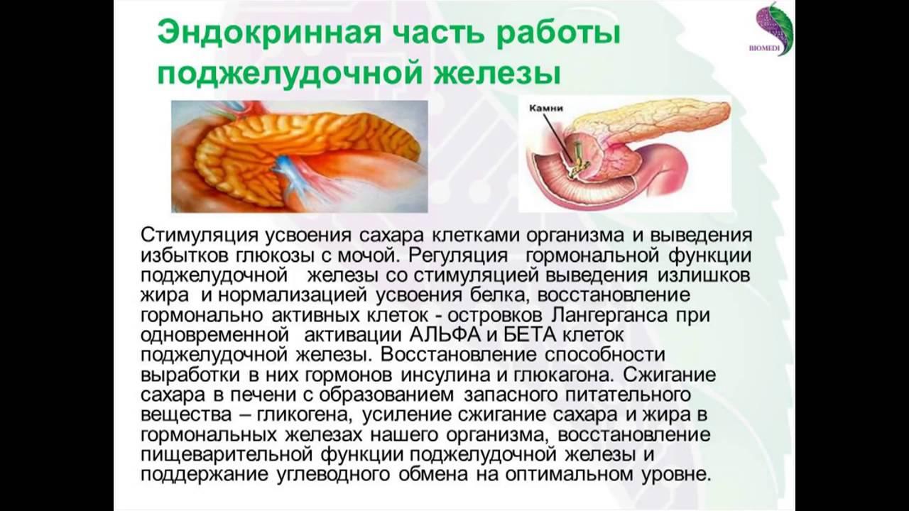 Лечение поджелудочной железы в домашних условиях