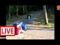 FUNNIEST FAILS COMPILATION #4 (HD) [TNT Channel] #LAM