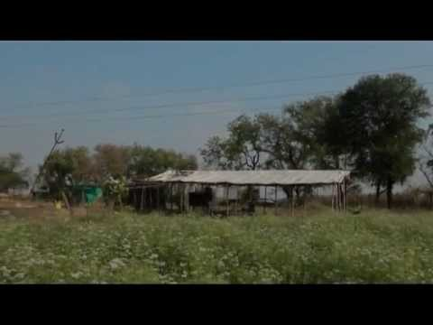 22 Months of Organic Farming in My New Farm_Subhash Sharma part 1 of 2