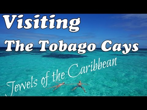 Visiting The Tobago Cays - Jewels Of The Caribbean!