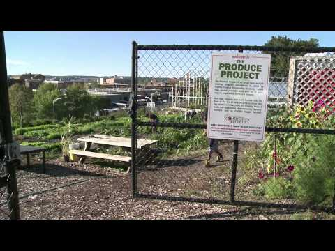 Introduction to Capital District Community Gardens