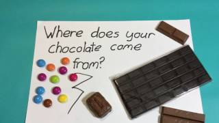 Where does your chocolate come from?