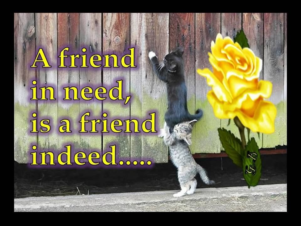 A friend in need is a friend indeed short essay