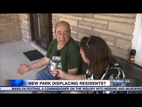 Mississauga wants to replace homes on floodplain with massive park