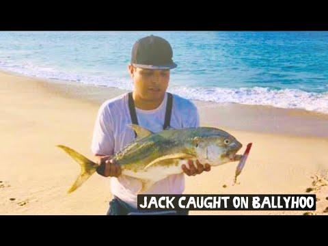 Jack Crevalle Cabo San Lucas Shore Fishing
