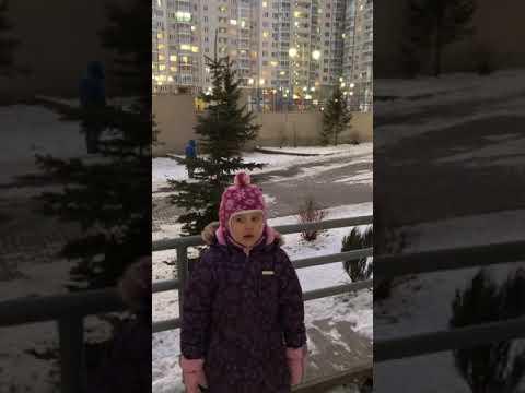 Изображение предпросмотра прочтения – АннаБаранова читает произведение «Поёт зима, аукает...» С.А.Есенина