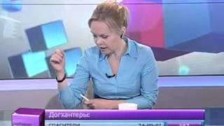 Хабаровск. Бродячие собаки и догхантеры(программа