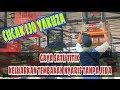 Cucak Ijo Yakuza Gacor Main Durasi Jeda Tipis Gaya Satu Titik  Mp3 - Mp4 Download