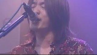 CARNATION ライブ 2005/9/18 @渋谷BOXX ・直枝政広 ・太田譲 ・矢部浩志...