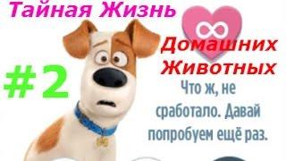Тайная Жизнь домашних животных - #2 Прохождение новых уровней:) Игровой мультик для детей