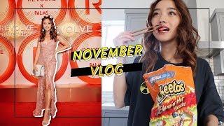 Spicy Times at Home & Vegas | Nov Vlog