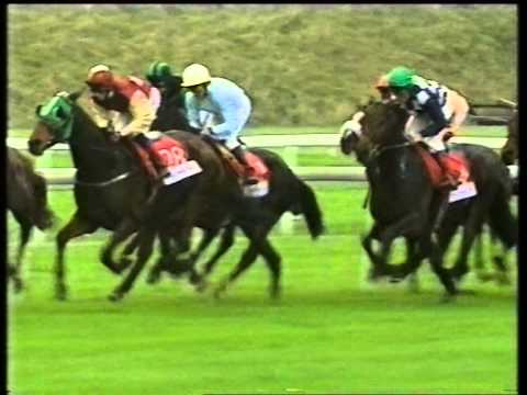 2001 Tote Cesarewitch Handicap
