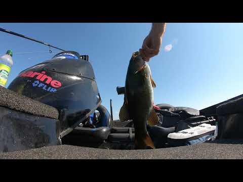 Bass Tournament On Lake Memphremagog - Ft. Woods N Weeds Outdoors