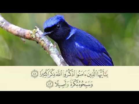 33 Al-'Aĥzāb (The Combined Forces) 38-48 Rodziah Abdul Rahman