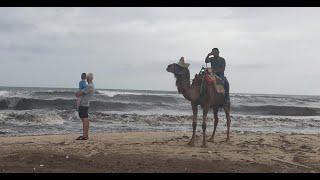 Отдых в Тунисе (Отель