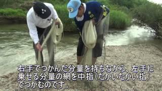 [Cast Net]投網大国滋賀県 ベテラン網師から伝授 投げ方のコツ 鮎大漁 thumbnail