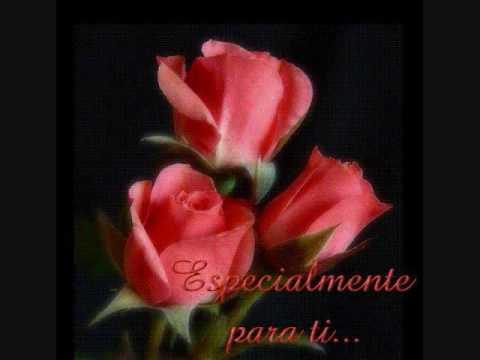 flor hermosa los arroyos de jungapeo michoacan youtube