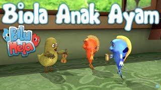 Bilu Mela: Biola Anak Ayam