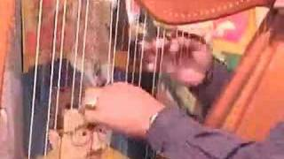 Daily Harp Moments-Pajaro Campana (Bell Bird)
