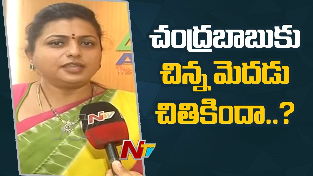 Download YSRCP MLA RK Roja Face to Face Over Chandrababu Comments on YCP l Ntv